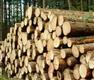 木及木制品